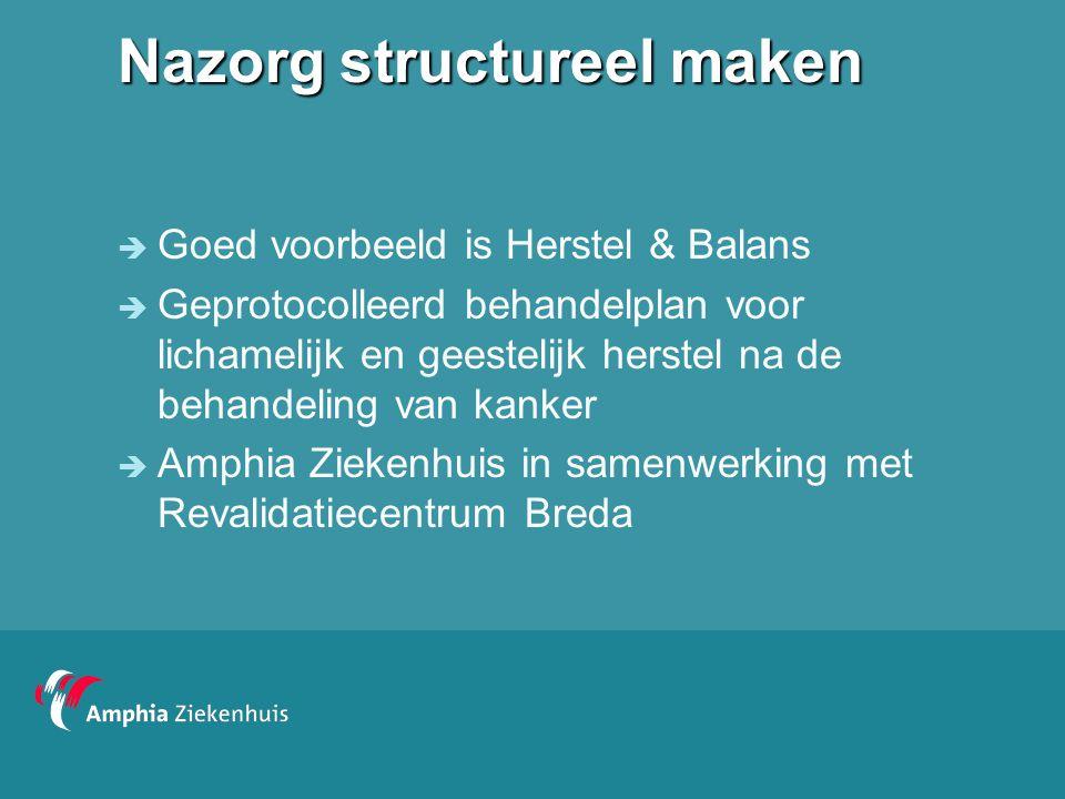 Nazorg structureel maken