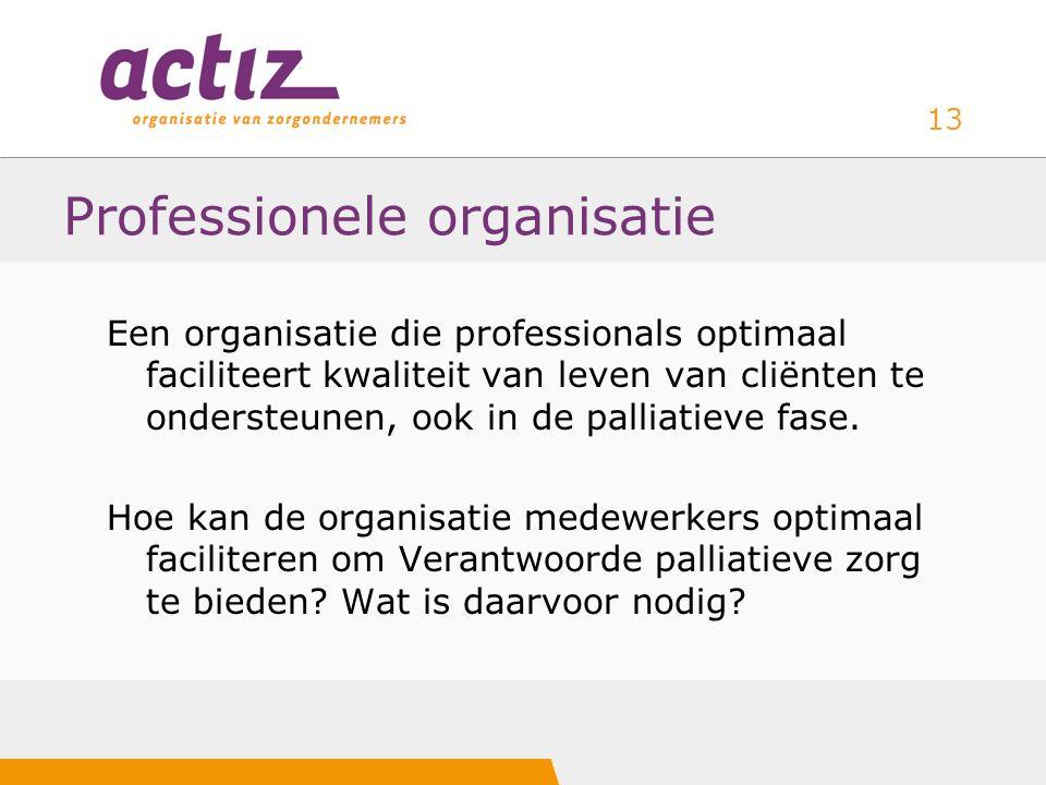 Professionele organisatie