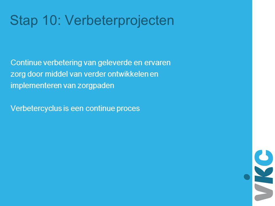 Stap 10: Verbeterprojecten