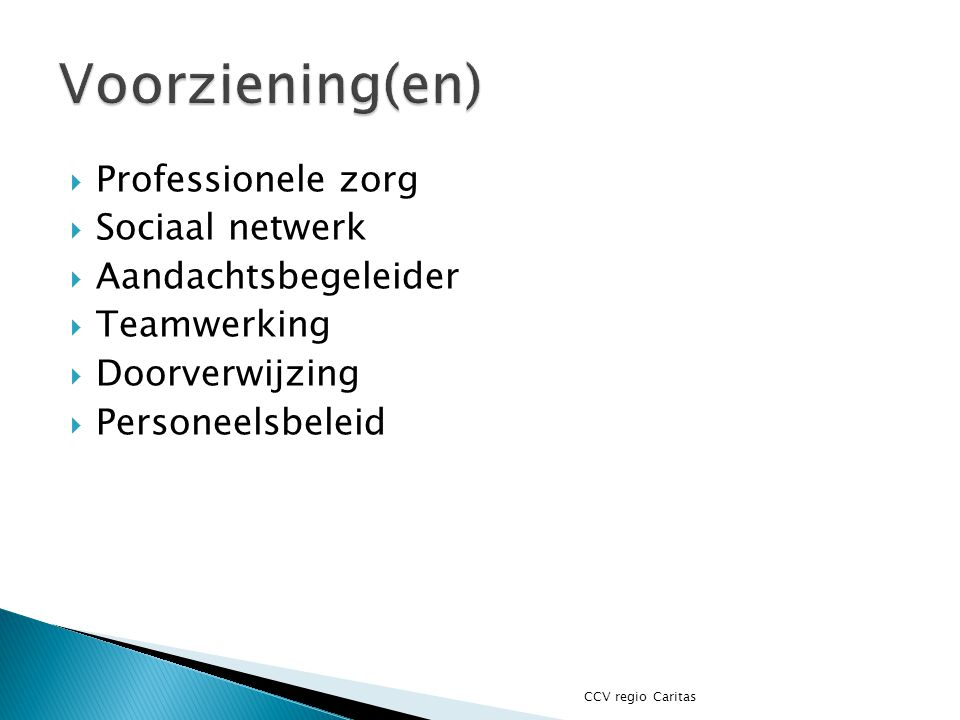 Voorziening(en) Professionele zorg Sociaal netwerk Aandachtsbegeleider