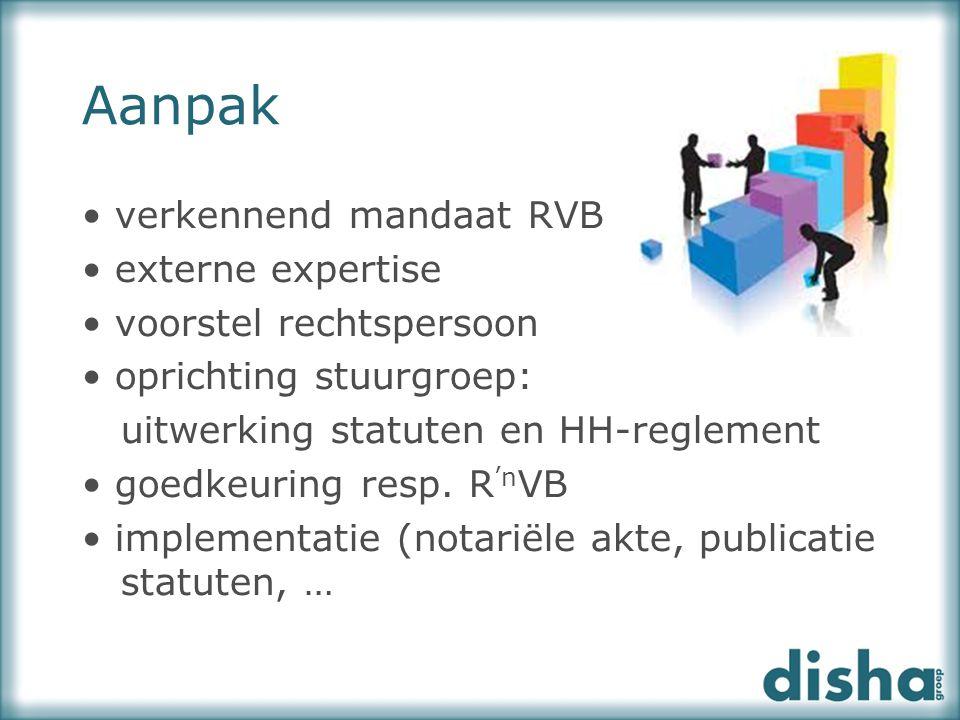 Aanpak verkennend mandaat RVB externe expertise voorstel rechtspersoon