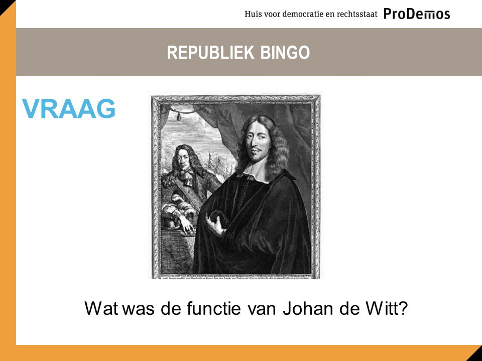 Wat was de functie van Johan de Witt