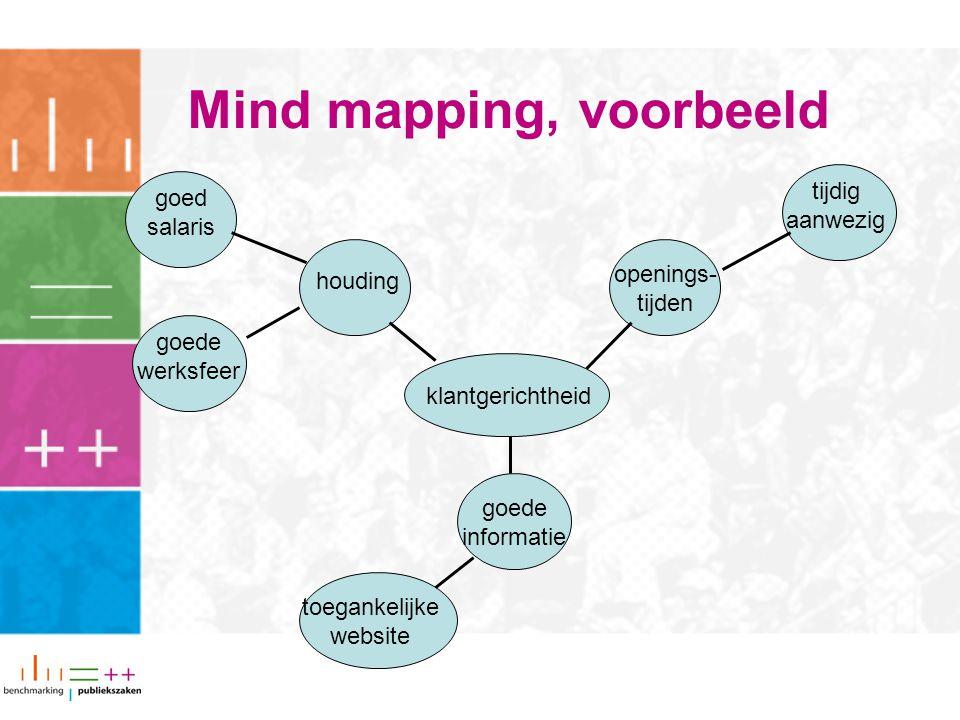 Mind mapping, voorbeeld