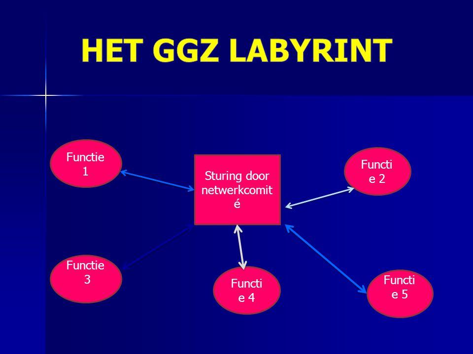 HET GGZ LABYRINT Functie 1 Functie 2 Sturing door netwerkcomité