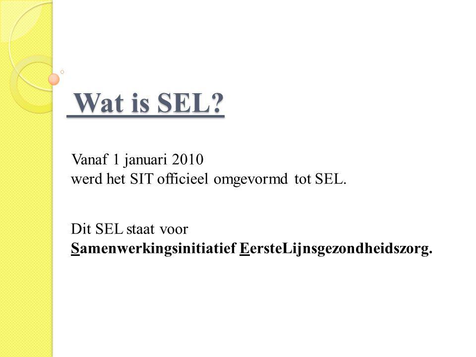 Wat is SEL Vanaf 1 januari 2010
