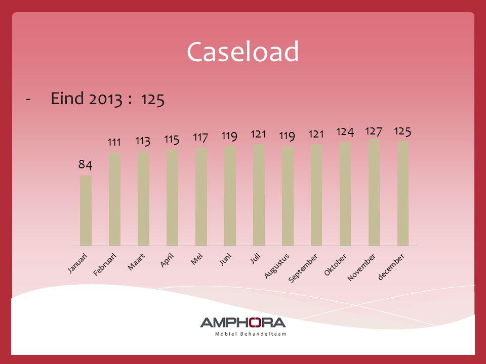 Caseload Eind 2013 : 125