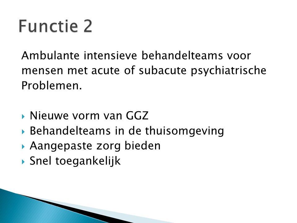Functie 2 Ambulante intensieve behandelteams voor