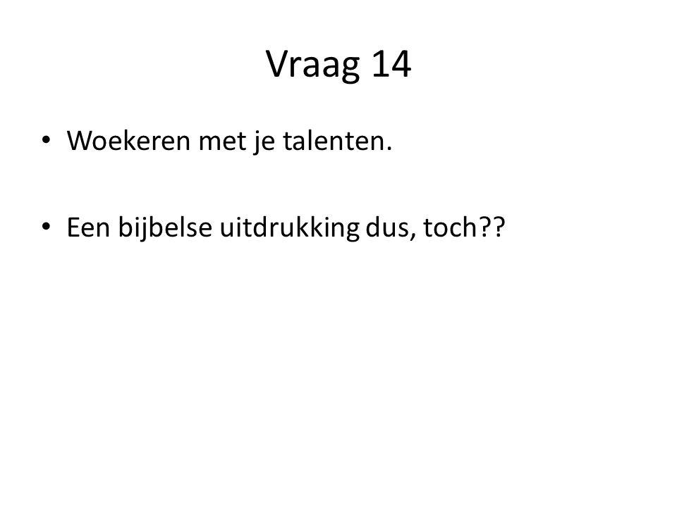 Vraag 14 Woekeren met je talenten.