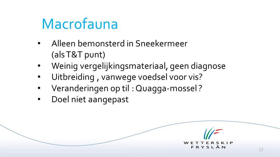 Macrofauna Alleen bemonsterd in Sneekermeer (als T&T punt)