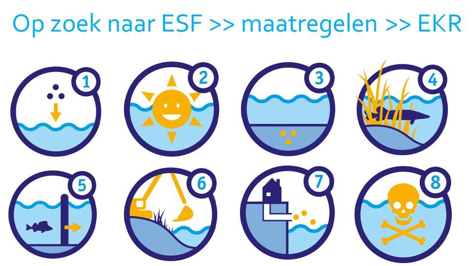 Op zoek naar ESF >> maatregelen >> EKR