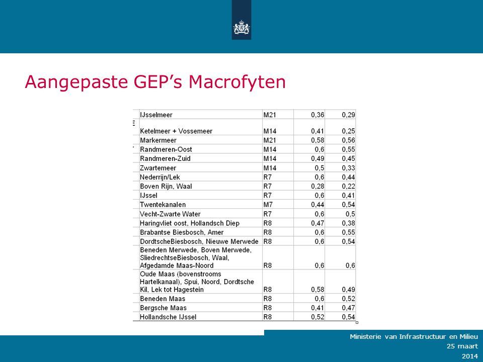 Aangepaste GEP's Macrofyten