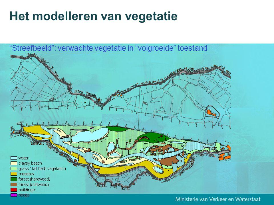 Het modelleren van vegetatie