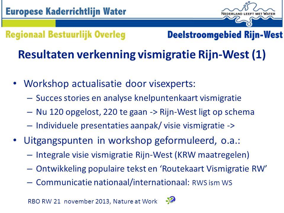 Resultaten verkenning vismigratie Rijn-West (1)