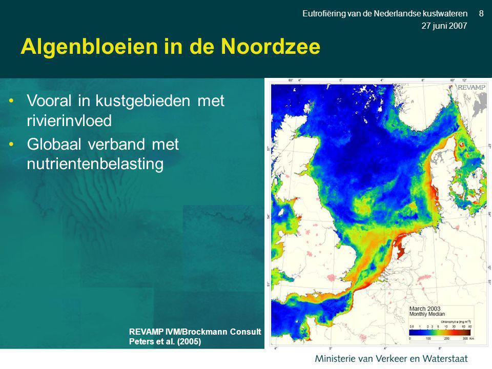 Algenbloeien in de Noordzee