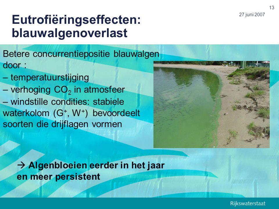 Eutrofiëringseffecten: blauwalgenoverlast