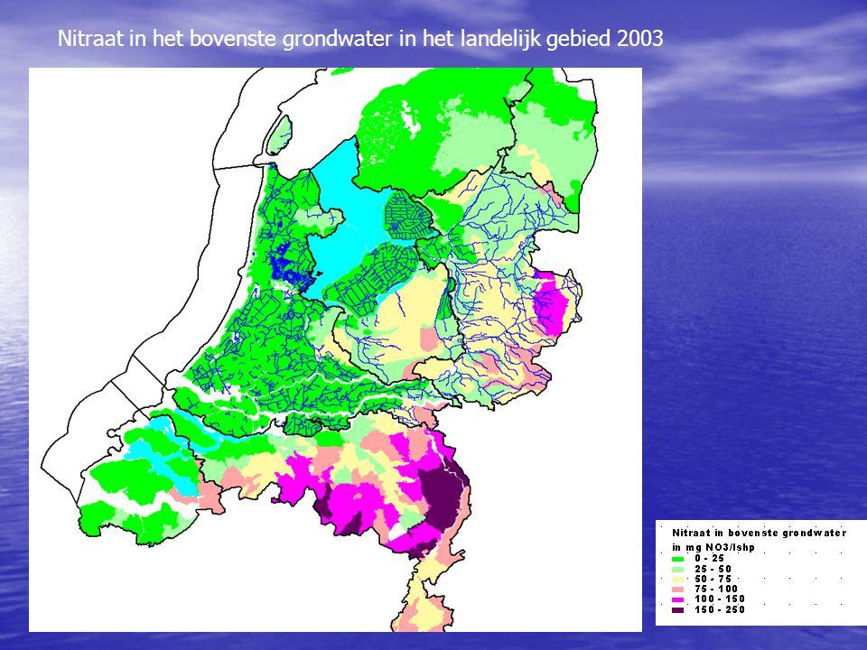 Nitraat in het bovenste grondwater in het landelijk gebied 2003