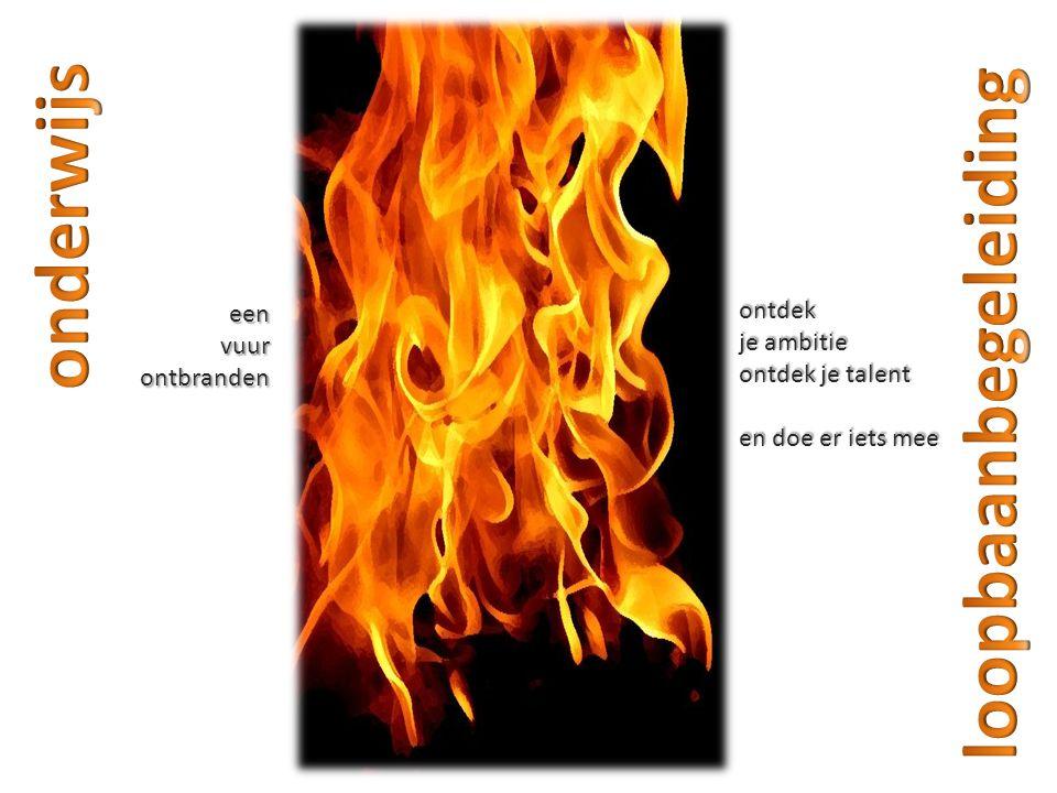 onderwijs loopbaanbegeleiding ontdek een je ambitie vuur