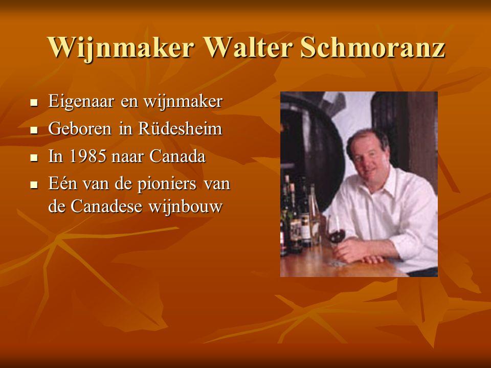 Wijnmaker Walter Schmoranz