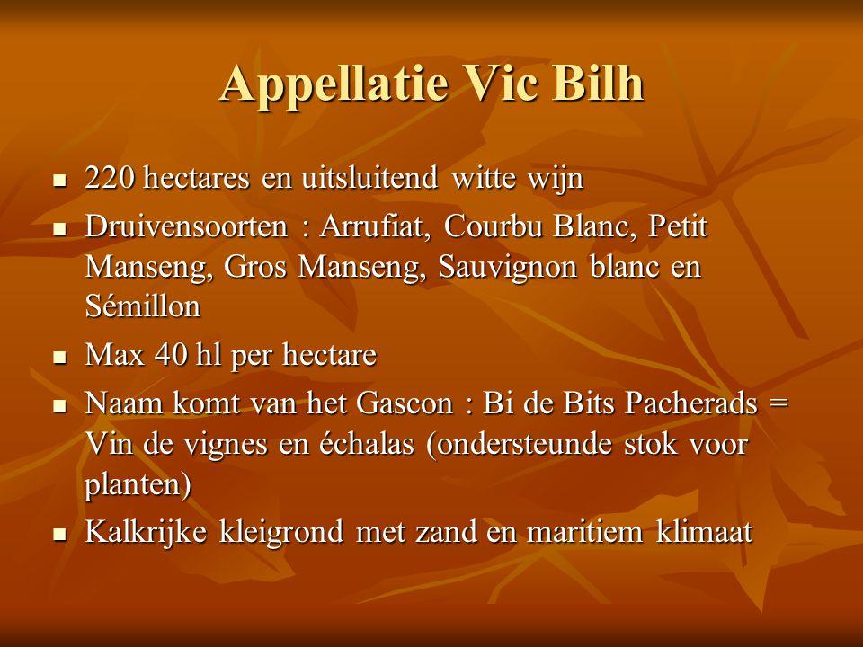 Appellatie Vic Bilh 220 hectares en uitsluitend witte wijn