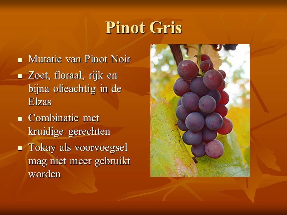 Pinot Gris Mutatie van Pinot Noir