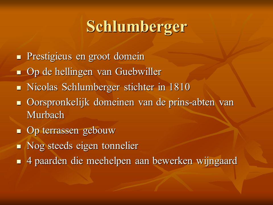 Schlumberger Prestigieus en groot domein