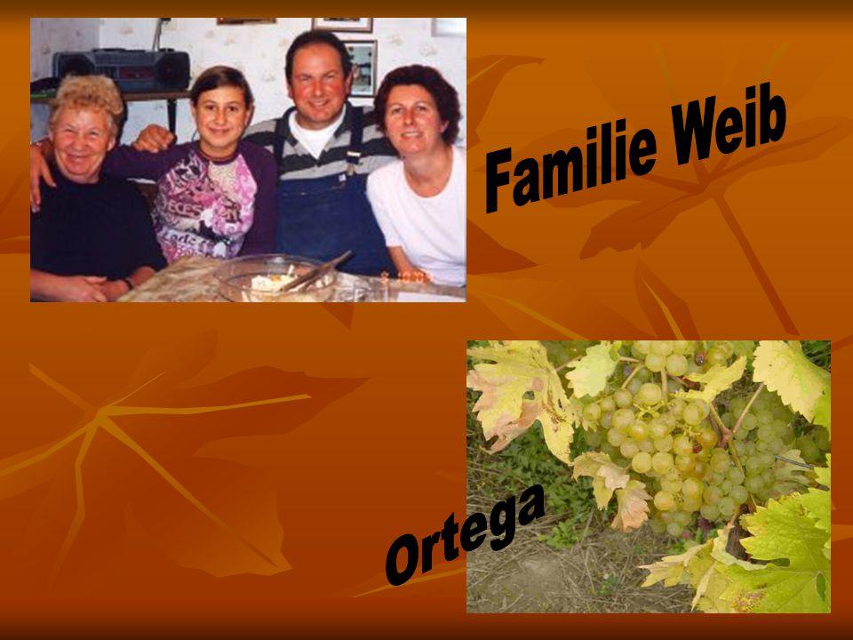 Familie Weib Ortega