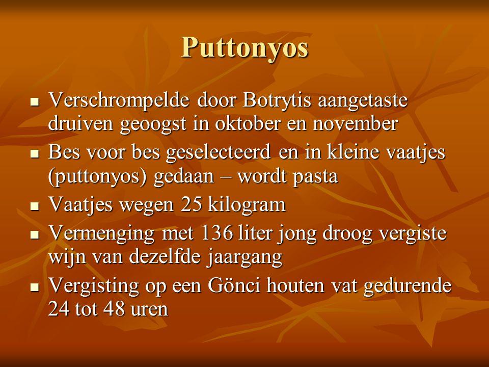 Puttonyos Verschrompelde door Botrytis aangetaste druiven geoogst in oktober en november.