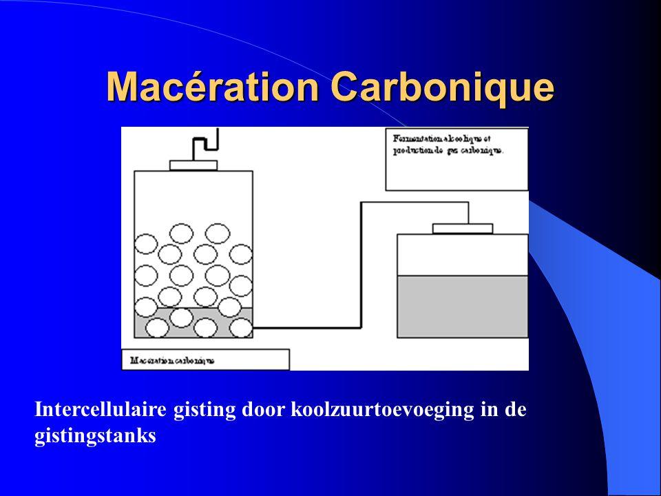 Macération Carbonique