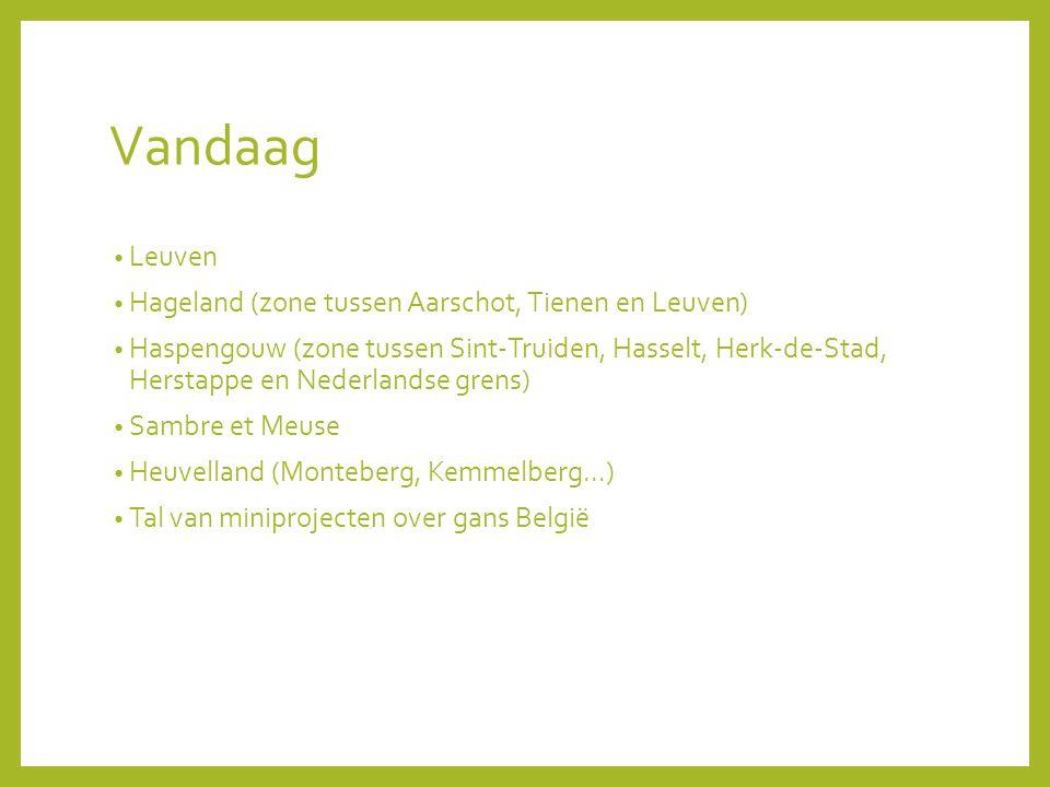Vandaag Leuven Hageland (zone tussen Aarschot, Tienen en Leuven)