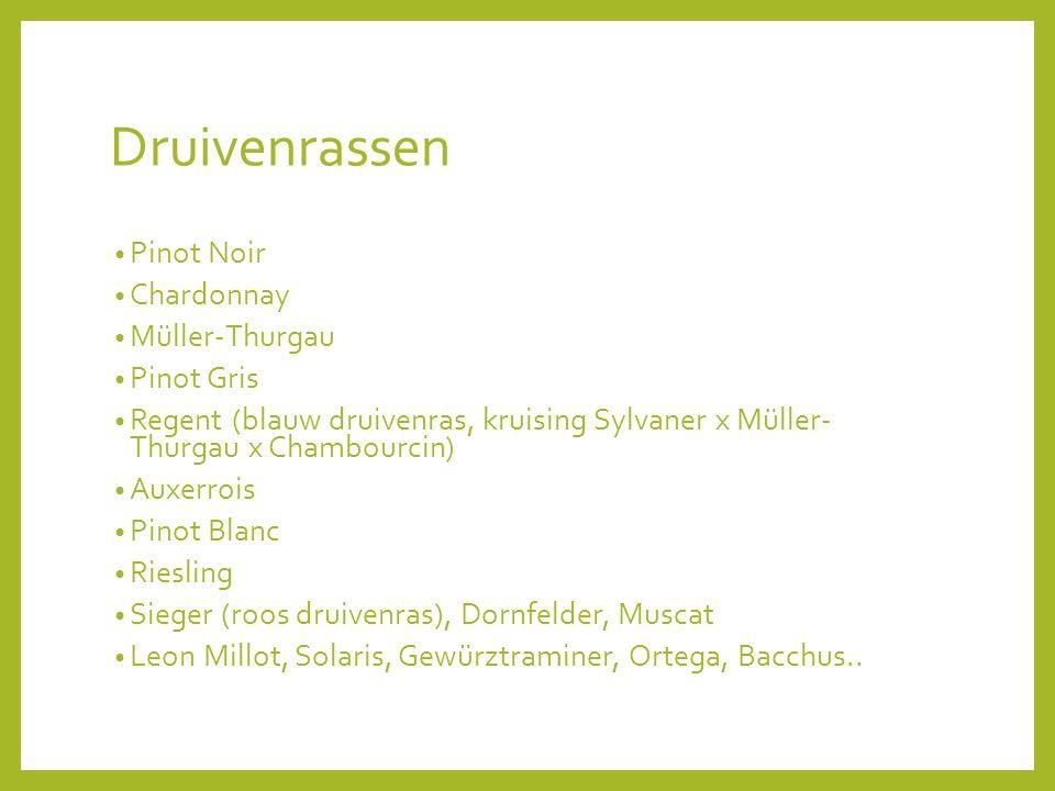 Druivenrassen Pinot Noir Chardonnay Müller-Thurgau Pinot Gris
