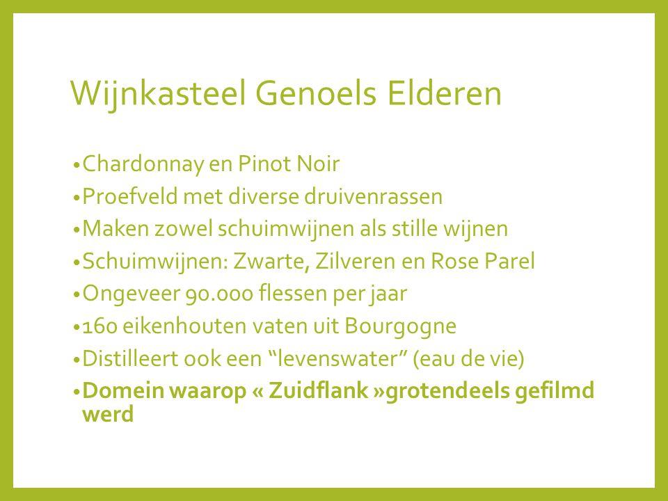 Wijnkasteel Genoels Elderen