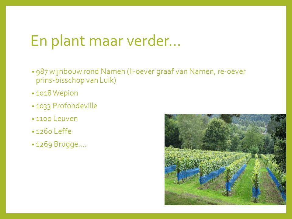 En plant maar verder... 987 wijnbouw rond Namen (li-oever graaf van Namen, re-oever prins-bisschop van Luik)