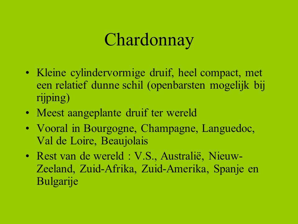 Chardonnay Kleine cylindervormige druif, heel compact, met een relatief dunne schil (openbarsten mogelijk bij rijping)