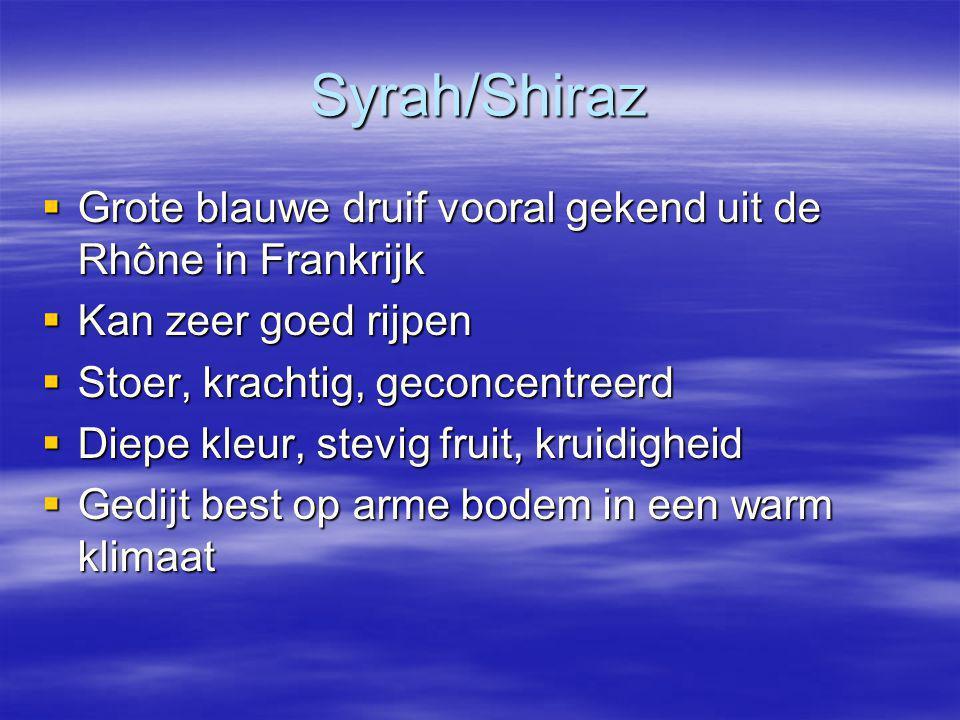 Syrah/Shiraz Grote blauwe druif vooral gekend uit de Rhône in Frankrijk. Kan zeer goed rijpen. Stoer, krachtig, geconcentreerd.