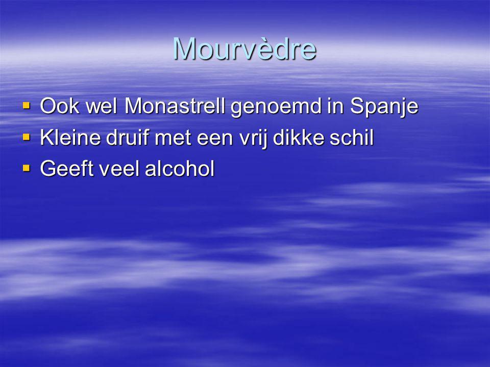 Mourvèdre Ook wel Monastrell genoemd in Spanje