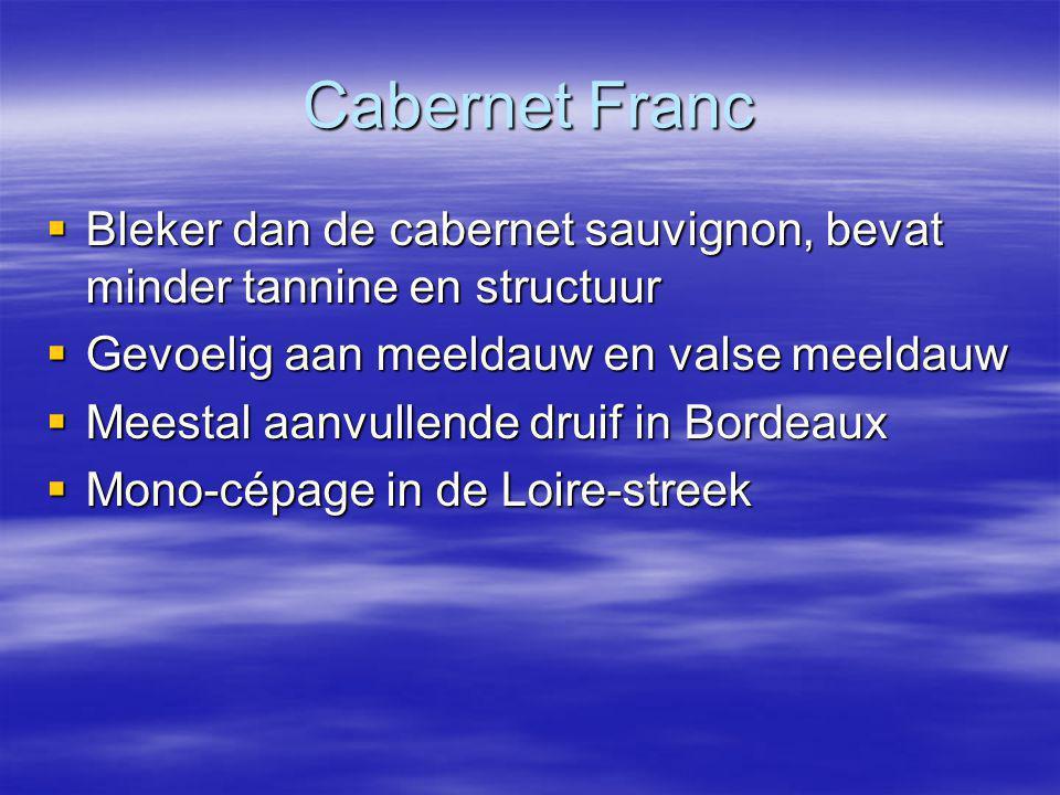 Cabernet Franc Bleker dan de cabernet sauvignon, bevat minder tannine en structuur. Gevoelig aan meeldauw en valse meeldauw.