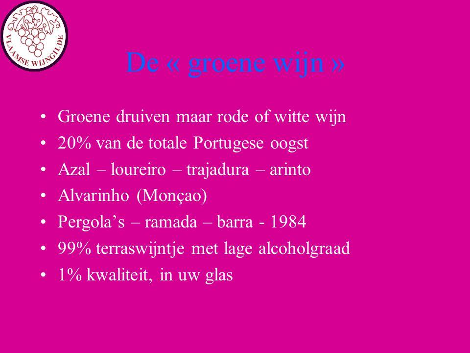 De « groene wijn » Groene druiven maar rode of witte wijn