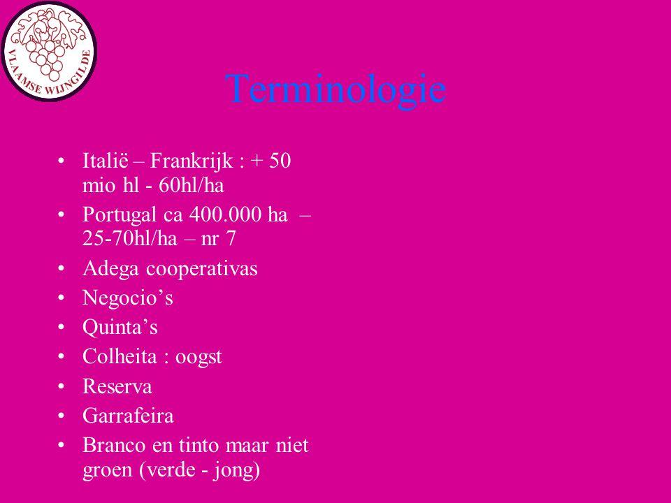 Terminologie Italië – Frankrijk : + 50 mio hl - 60hl/ha