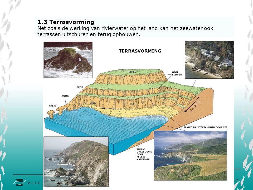 1.3 Terrasvorming Net zoals de werking van rivierwater op het land kan het zeewater ook terrassen uitschuren en terug opbouwen.