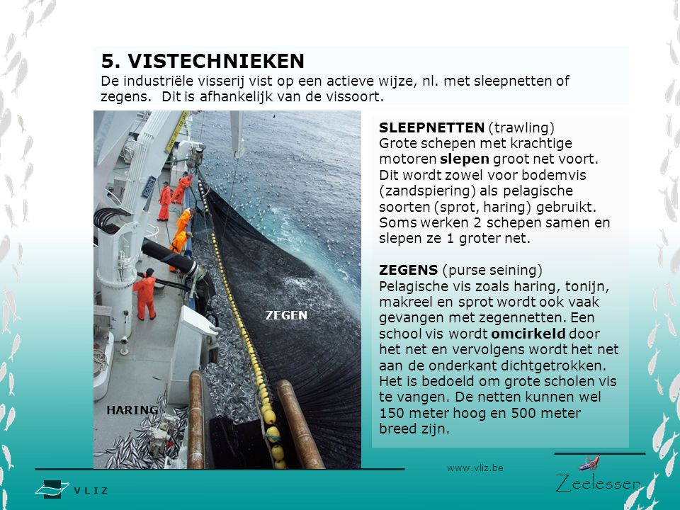 5. VISTECHNIEKEN De industriële visserij vist op een actieve wijze, nl. met sleepnetten of zegens. Dit is afhankelijk van de vissoort.