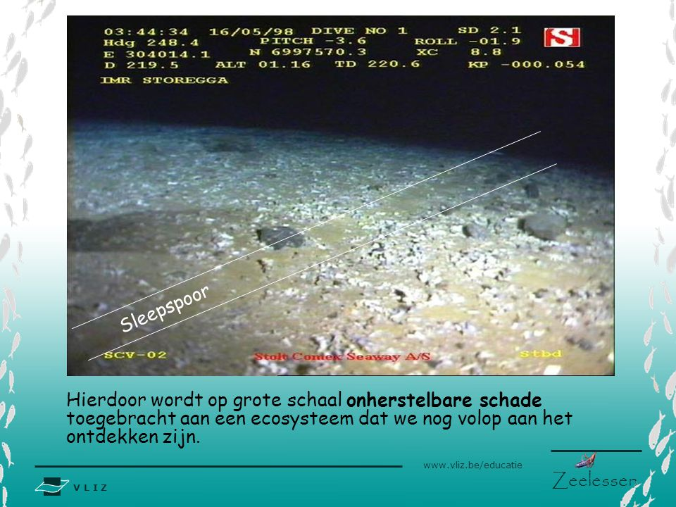 Bedreigingen Bottom trawling
