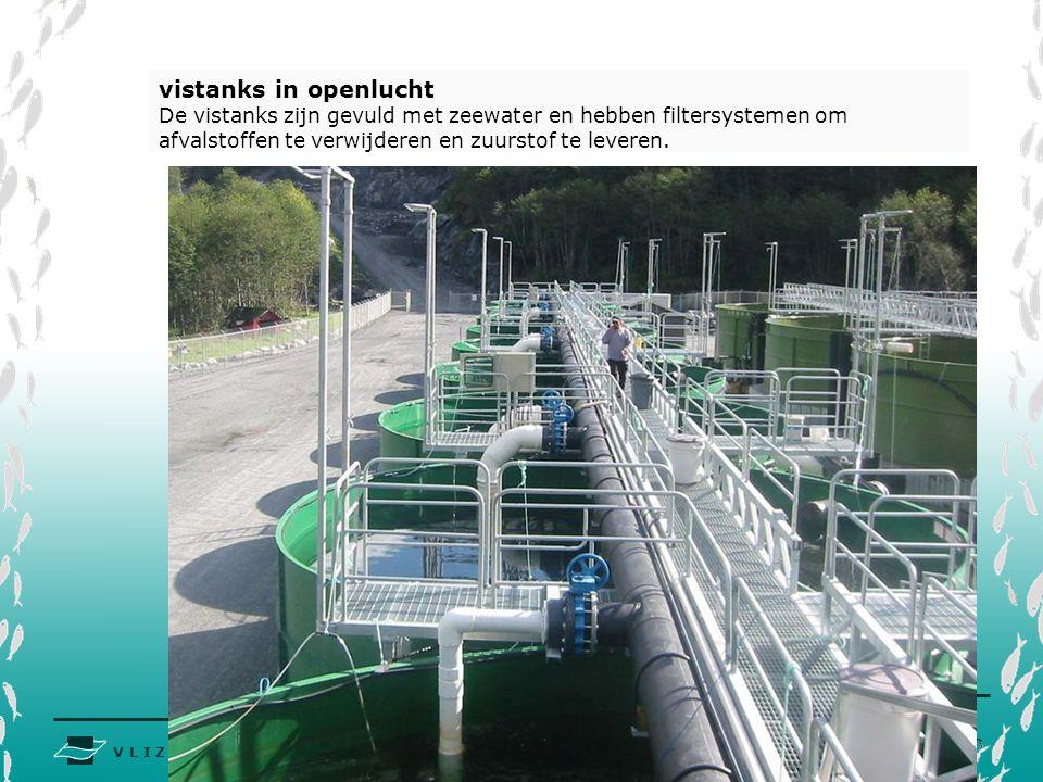 vistanks in openlucht De vistanks zijn gevuld met zeewater en hebben filtersystemen om afvalstoffen te verwijderen en zuurstof te leveren.