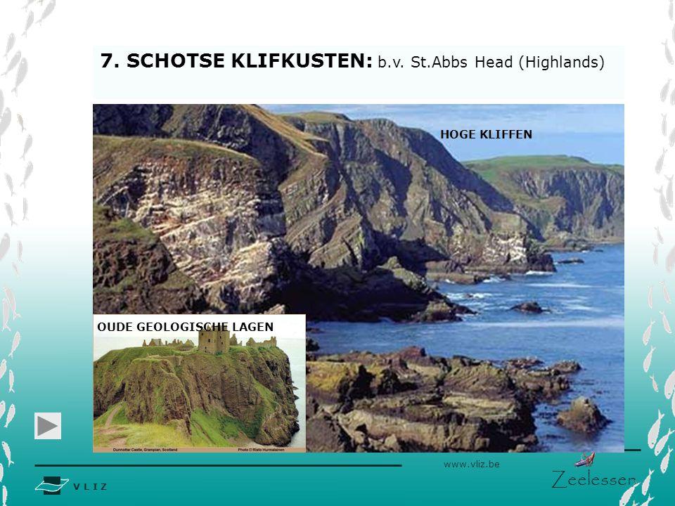 7. SCHOTSE KLIFKUSTEN: b.v. St.Abbs Head (Highlands)