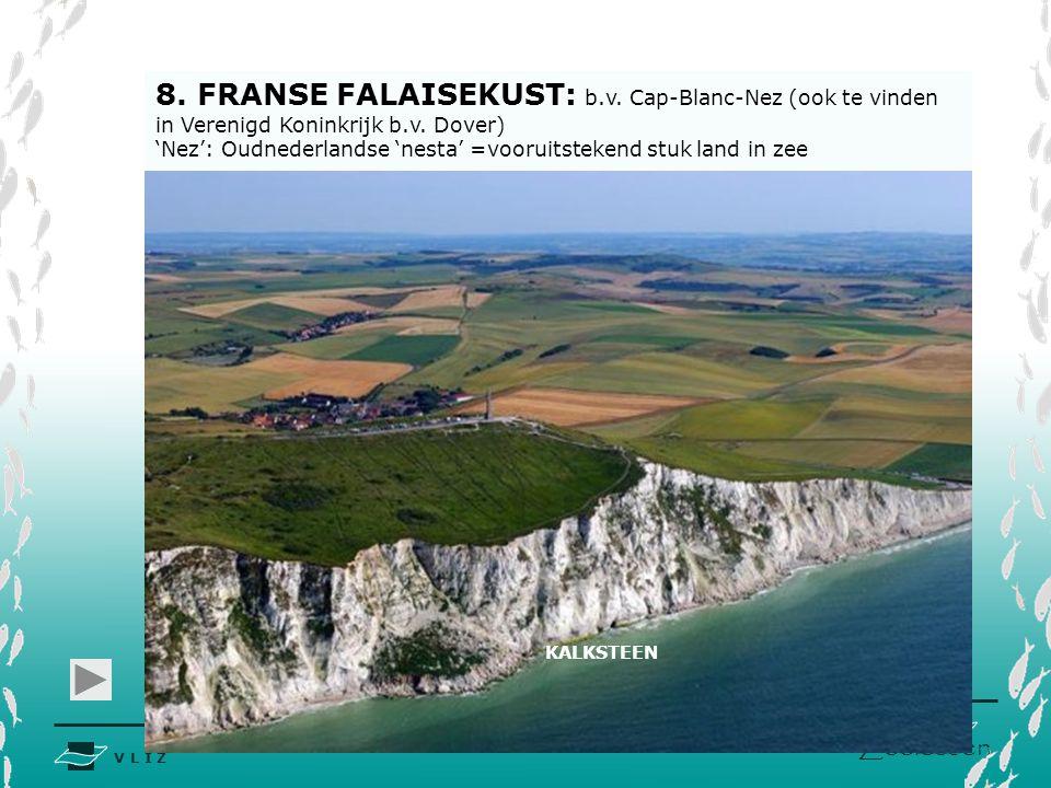 8. FRANSE FALAISEKUST: b. v