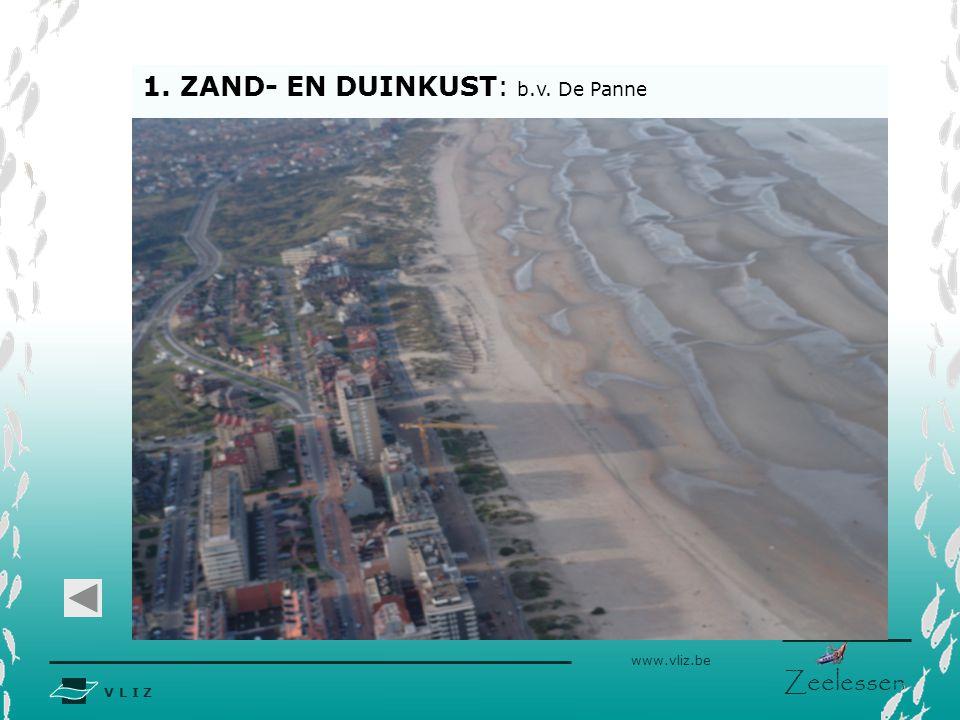 1. ZAND- EN DUINKUST: b.v. De Panne