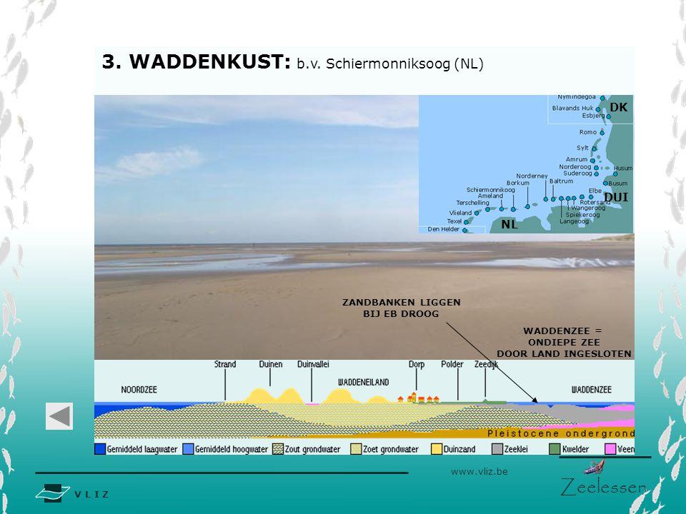 3. WADDENKUST: b.v. Schiermonniksoog (NL)