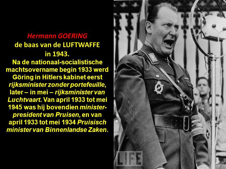 de baas van de LUFTWAFFE