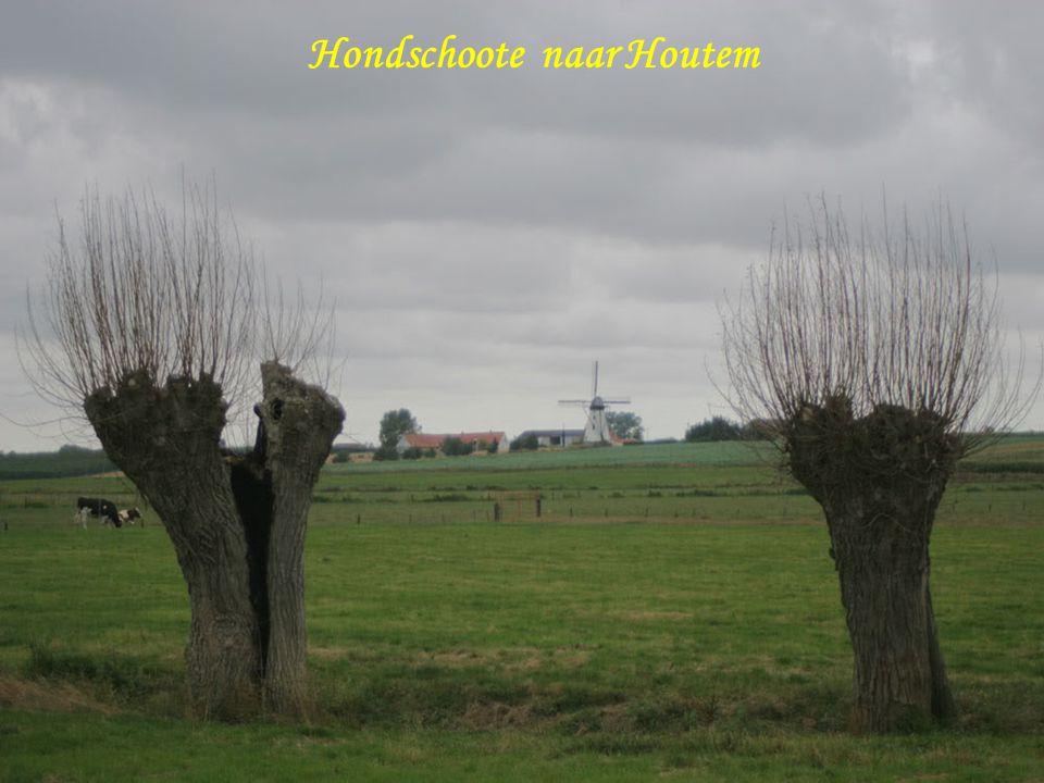 Hondschoote naar Houtem