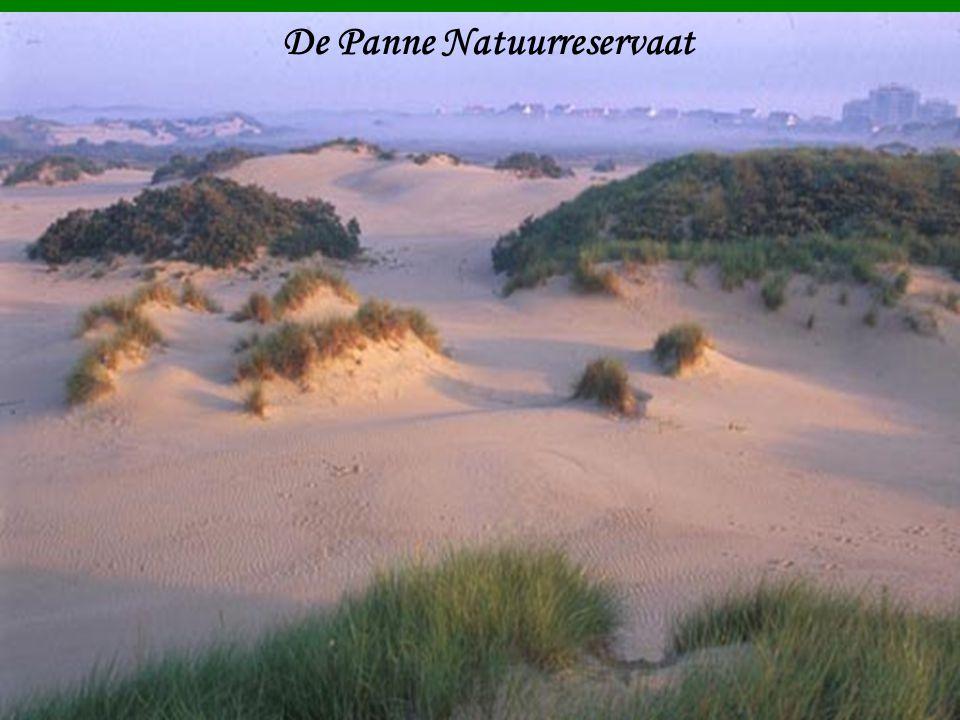 De Panne Natuurreservaat