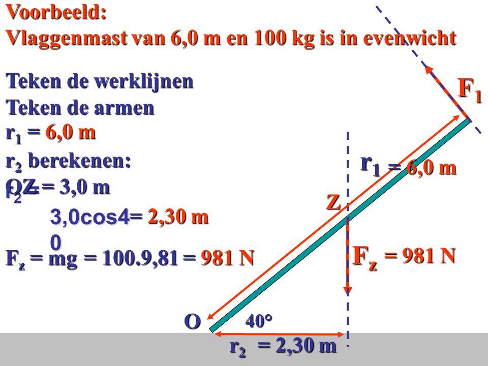 F1 r1 Fz Voorbeeld: Vlaggenmast van 6,0 m en 100 kg is in evenwicht